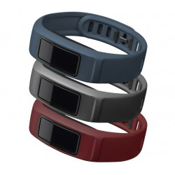 GARMIN Downtown , Burgundy , Slate/Navy , Large , vívofit® 2 Bands